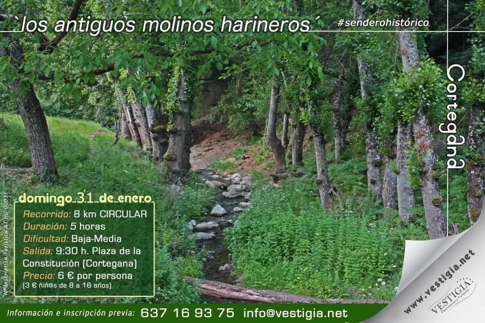 cartel molinos harineros.jpg