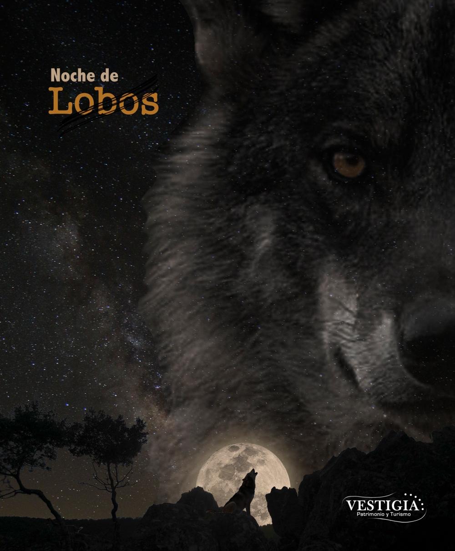 cartel noche de lobos